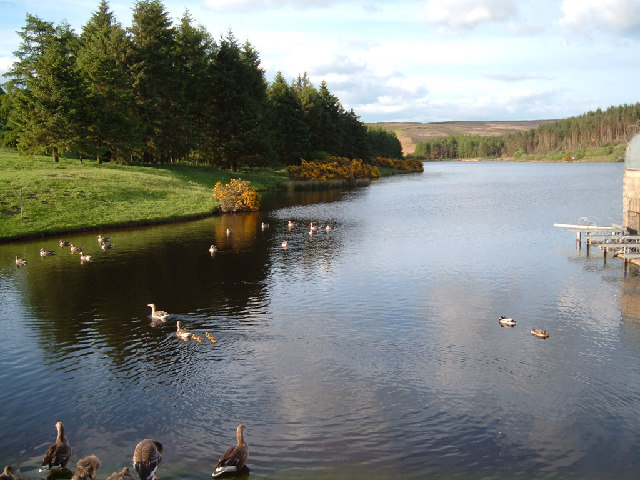 KID-FRIENDLY WALK | Cod Beck Reservoir – North York Moors