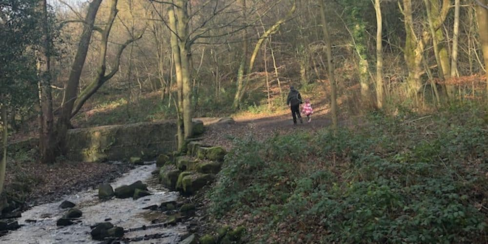 KID-FRIENDLY WALK | Endcliffe Park to Forge Dam – Sheffield 84