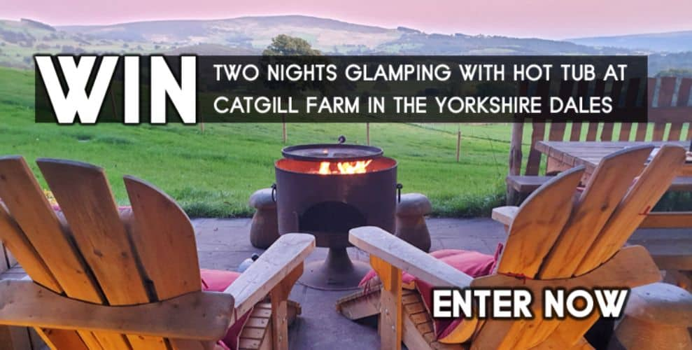 Cat Gill Competition banner ad