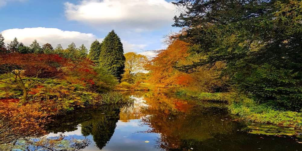 A few of my favourite Autumnal walks in North Yorkshire 21