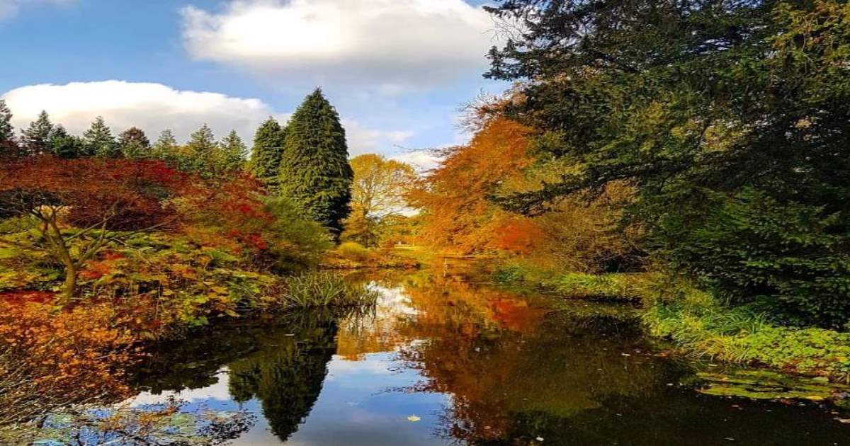 A few of my favourite Autumnal walks in North Yorkshire 85