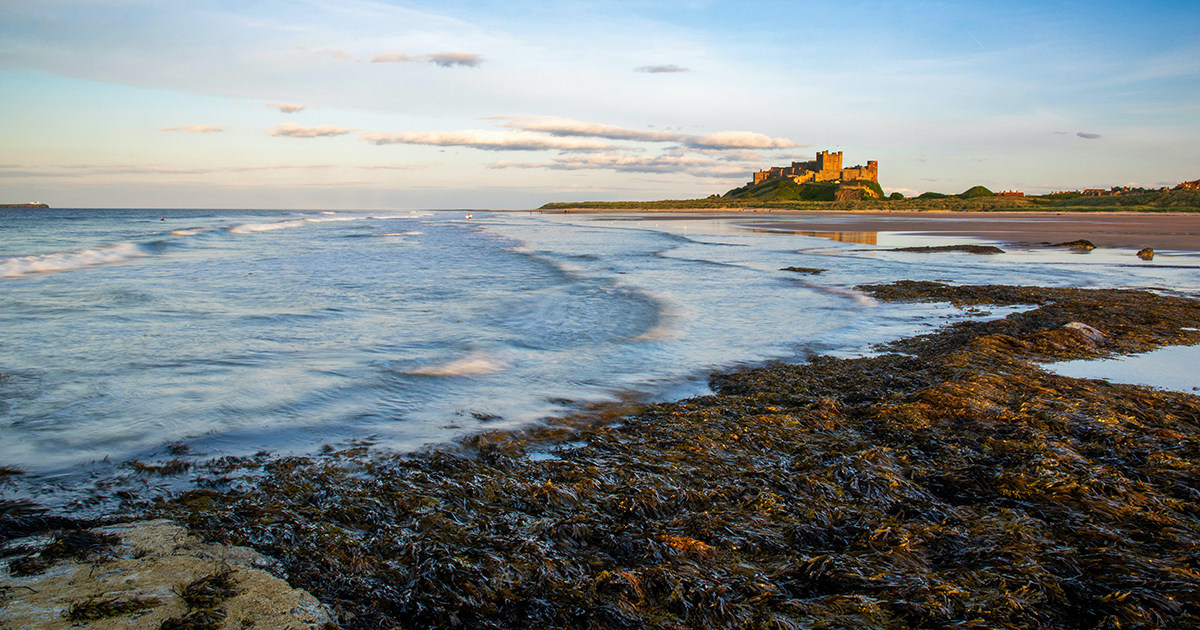 a staycation with rocky shoreline and Bamburgh Castle in the distance
