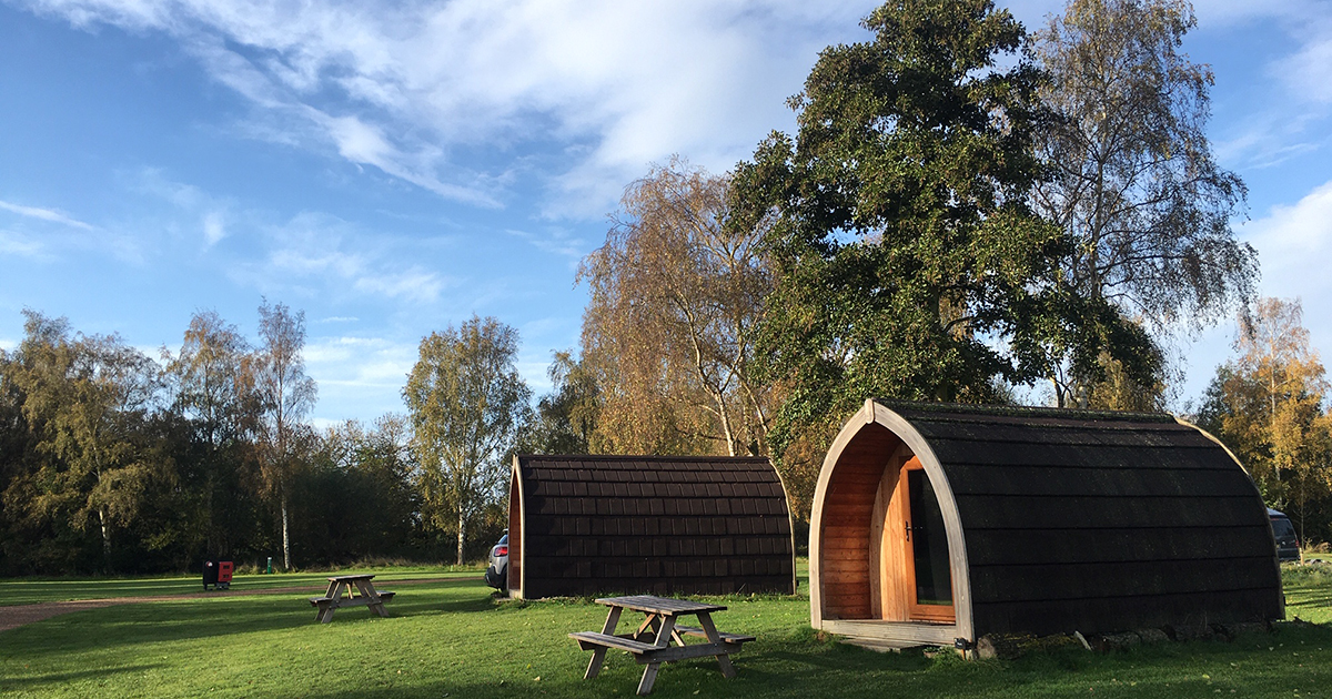 Two wooden glamping pods on a grassy meadow with tall trees and blue sky behind them
