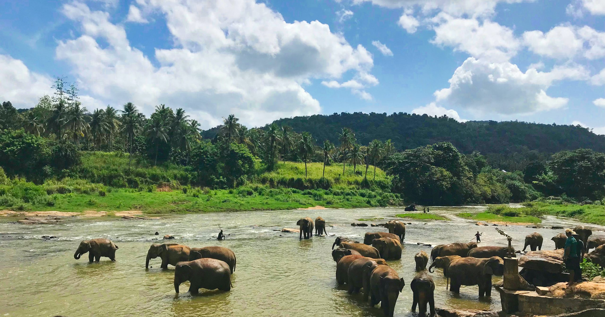 TRAVEL: Our Indian Ocean special - Sri Lanka & The Maldives for families 4