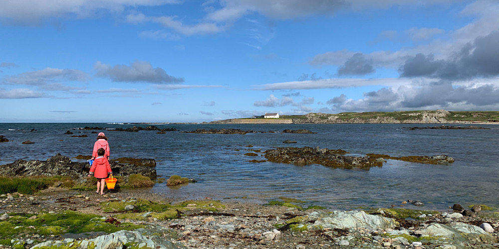 Anglesey Rockpools