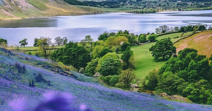 Spring Walks in The Lake District FEATURE IMAGE