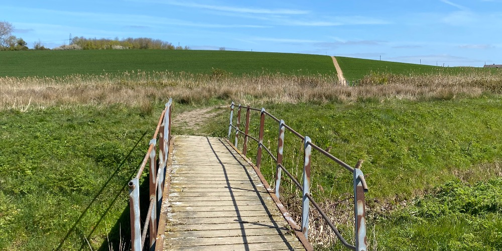 Walks in Whitstable countryside